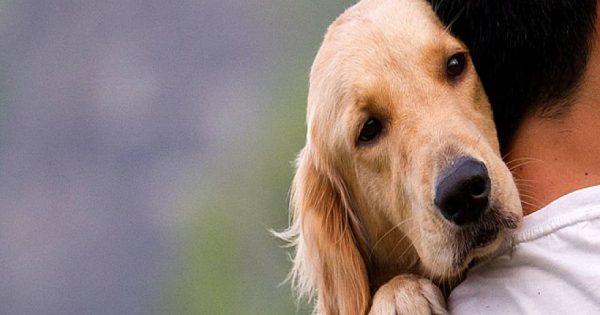 Δείτε το συγκινητικό βίντεο για τον πιο πιστό φίλο του ανθρώπου