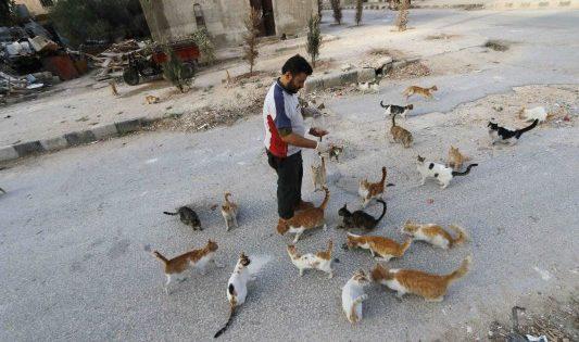 Ο άνθρωπος που αψηφά εμφύλιο και τζιχαντιστές για να σώσει αδέσποτα γατάκια (ΦΩΤΟ)