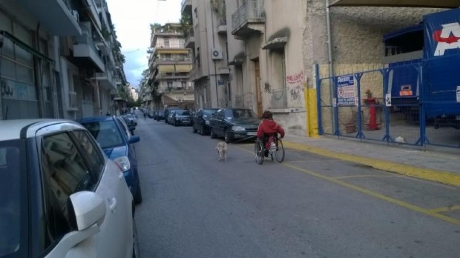 Σκύλος κόπρανα αναπηρικό καροτσάκι