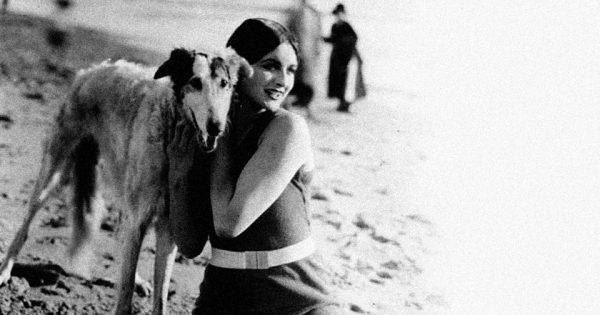 Τι μπορεί να κάνει ένας σκύλος στην παραλία;