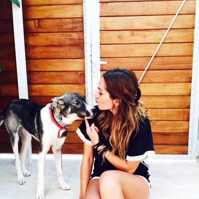 υιοθεσία αδέσποτων Δέσποινα Βανδή αδέσποτο αδέσποτη σκυλίτσα