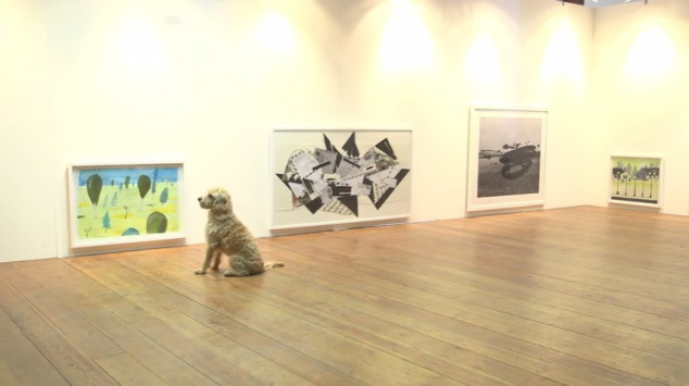 σκύλοι Έκθεση σύγχρονης τέχνης