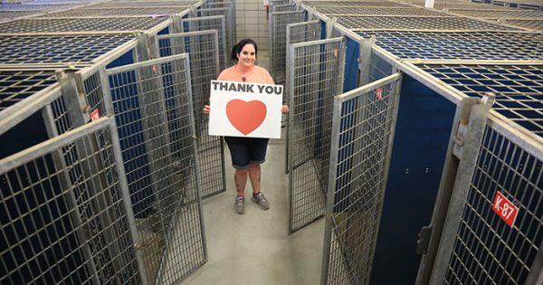 45 χιλιάδες εγκαταλελειμμένα ζώα βρήκαν σπίτι την προηγούμενη εβδομάδα