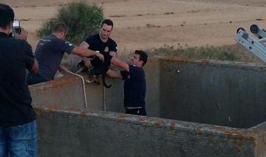 Έσωσαν τα δυο σκυλάκια που κάποιος πέταξε σε άδεια δεξαμενή για να πεθάνουν από δίψα και πείνα στη Λήμνο