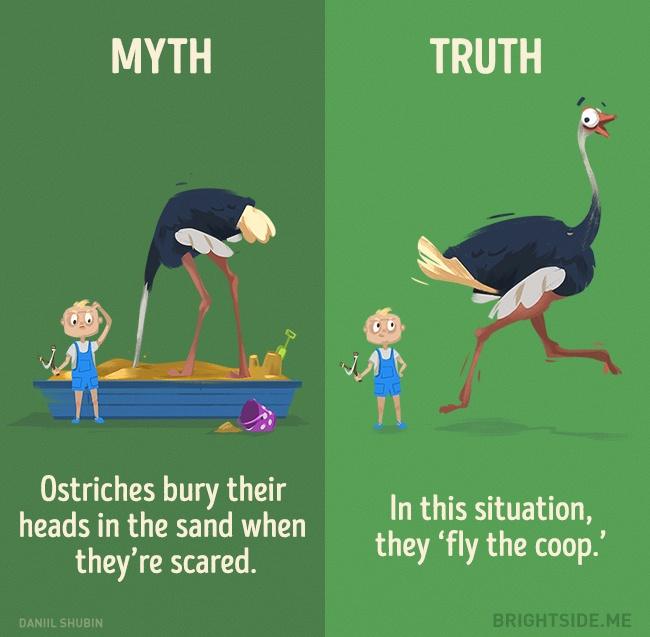 μύθοι ζώα