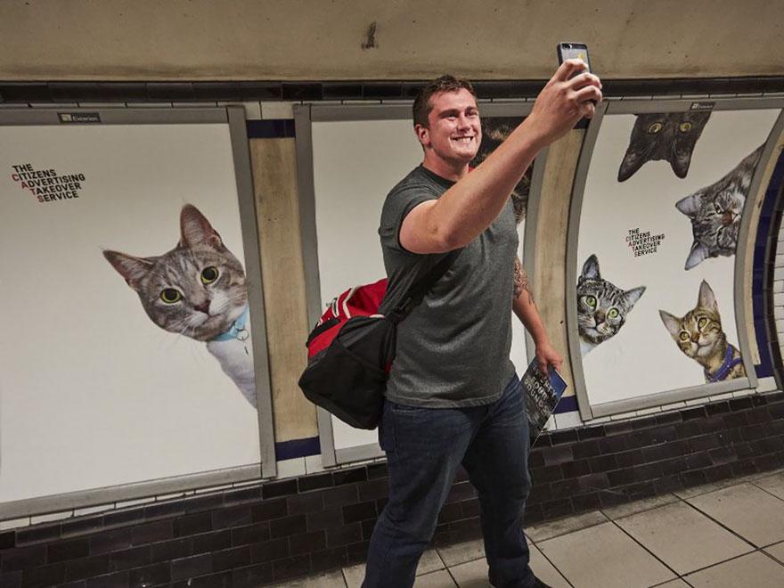 μετρό Λονδίνο γάτες