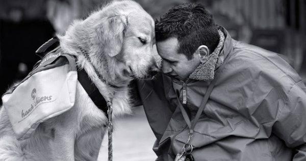 Άνθρωπος και σκύλος , μια αιώνια σχέση αγάπης