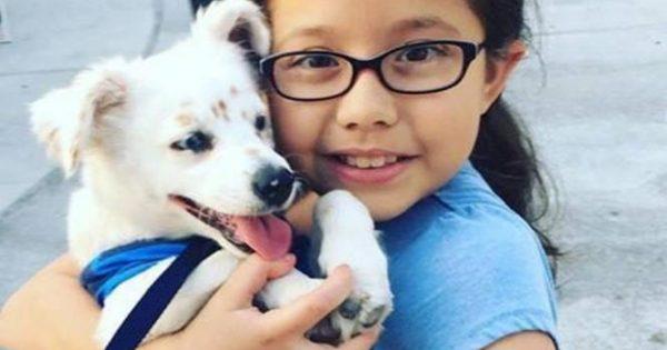 Συγκινητικό: Κοριτσάκι δίδαξε νοηματική στο σκυλάκι της για να επικοινωνούν (Video)