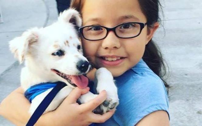 Σκύλος νοηματική κορίτσι