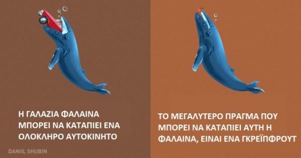 12 μύθοι για τα ζώα που πιστεύουν όλοι οι άνθρωποι αλλά δεν έχουν καμία σχέση με την πραγματικότητα!