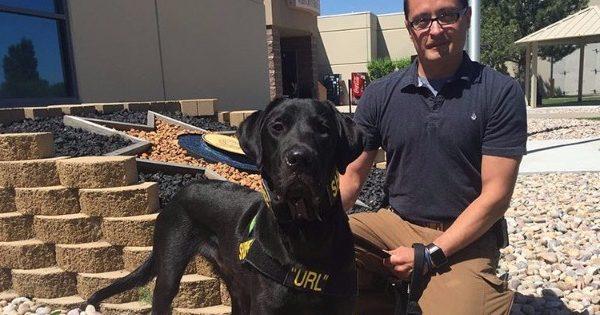 Σκύλος της αστυνομίας λύνει υποθέσεις παιδικής πορνογραφίας (video)