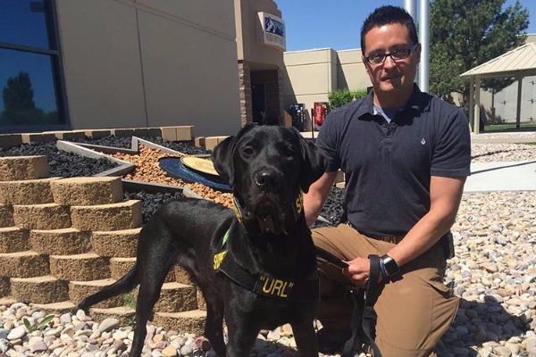 Σκύλος αστυνομίας Σκύλος αστυνομία