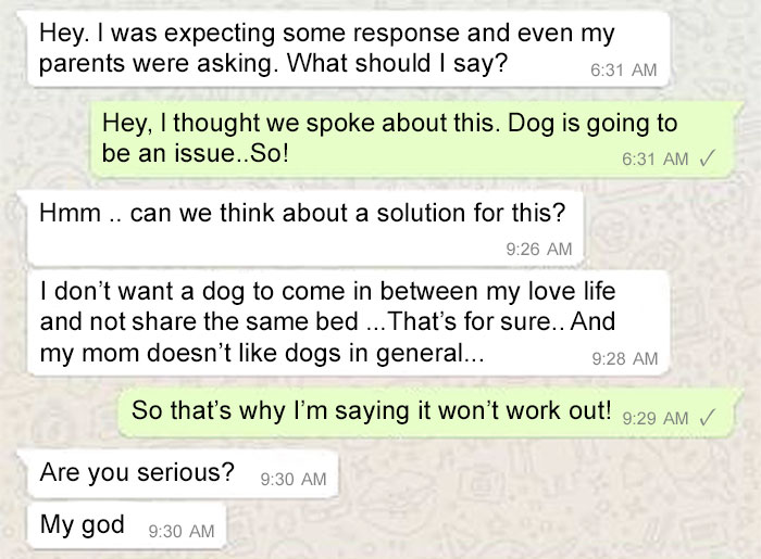 Σκύλος γάμος