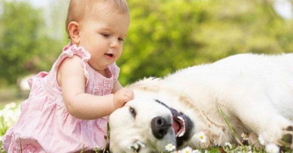 Τα παιδιά που αγαπούν τα ζώα γίνονται καλύτεροι άνθρωποι