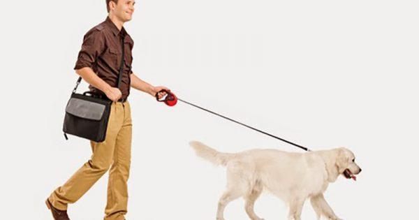 Όταν βιάζεσαι μεγάλωσε τη βόλτα του σκύλου!