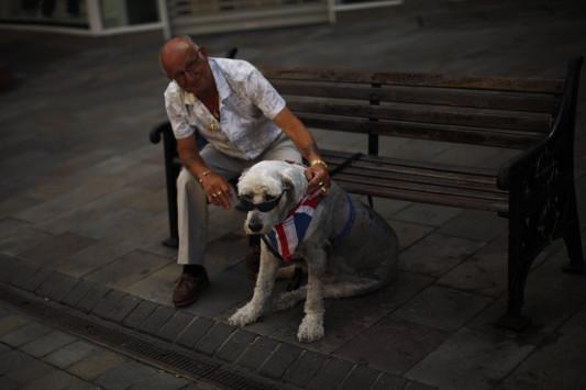 Σκύλος προσωπικότητα