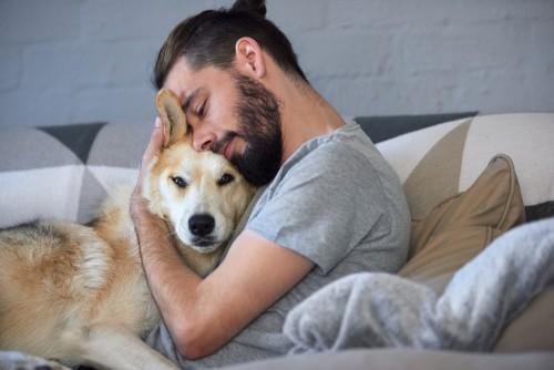 σκύλος και άνθρωπος Σκύλος