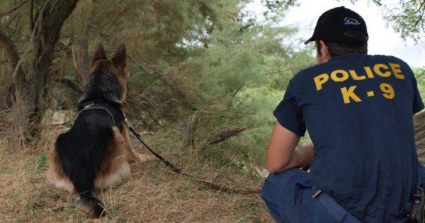 Κακοποίηση και θανάτωση ζώων στην Ελλάδα του 2016 – Τι λένε τα στοιχεία της Αστυνομίας