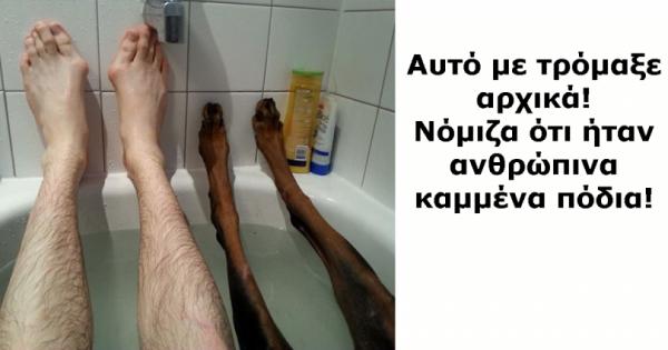 15 μοναδικές φωτογραφίες σκύλων που είναι αδύνατον να τις δεις και να μη χαμογελάσεις!