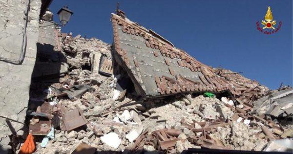Σκύλος θάφτηκε ζωντανός στoν σεισμό και επέζησε! Δείτε το βίντεο [video]