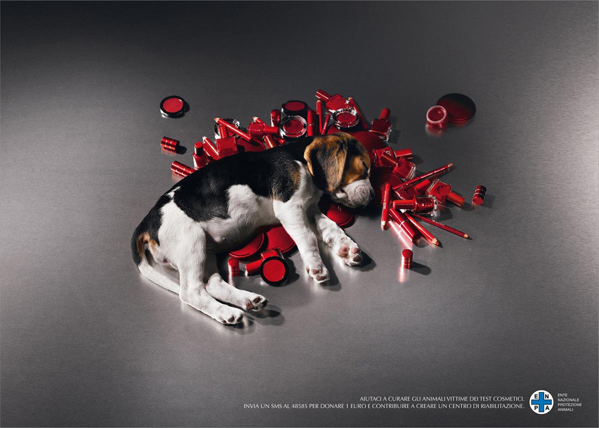 καλλυντικά και ζώα καλλυντικά ζώα δοκιμές