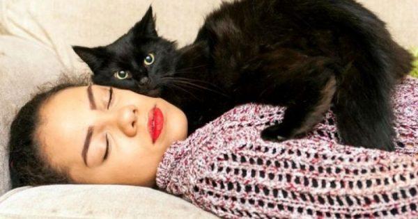 Ο γάτος που σώζει από επιληπτικές κρίσεις!