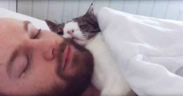 Αυτός ο καλός άντρας υιοθέτησε μια γάτα που κανείς άλλος δεν ήθελε. Σήμερα η αγάπη τους συγκινεί ολόκληρο τον πλανήτη!