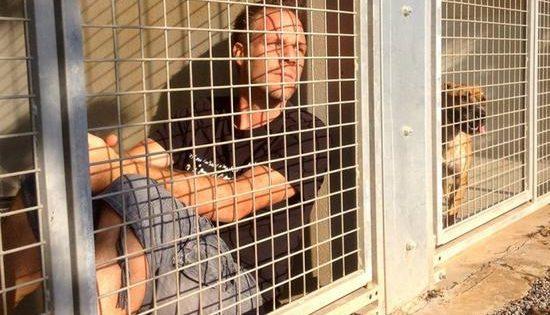 Θα παραμείνει κλεισμένος σε κλουβί μέχρι να υιοθετηθούν 300 σκύλοι