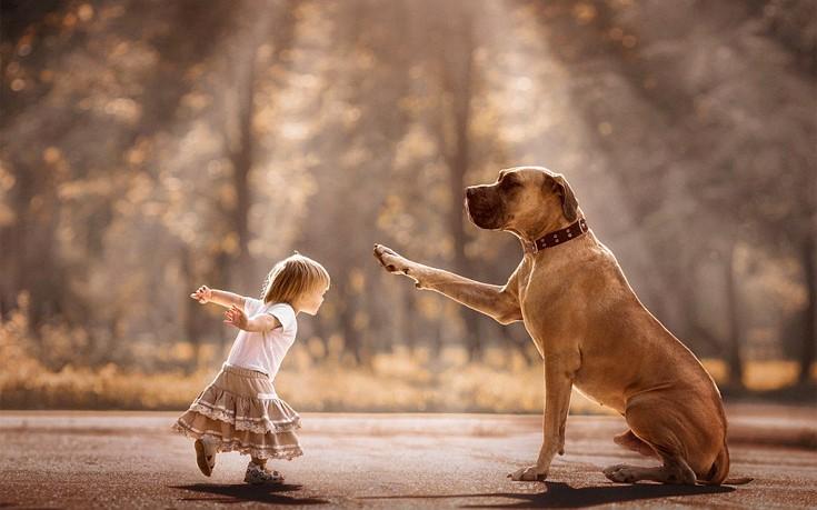 σκύλοι παιδιά