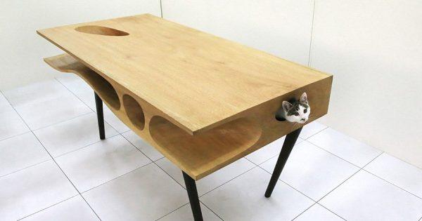 Καινοτόμο τραπέζι επιτρέπει στις γάτες να παίζουν ενώ ταυτόχρονα άνθρωποι το χρησιμοποιούν για να δουλεύουν