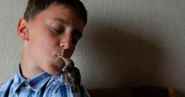 Μια ασυνήθιστη φιλία μεταξύ ενός σπουργιτιού και ενός 12χρονου αγοριού