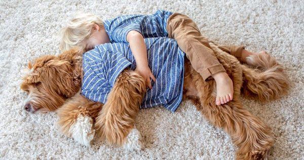 Αυτό το υιοθετημένο παιδάκι δυσκολεύτηκε πολύ να προσαρμοστεί στη νέα του οικογένεια. Δείτε όμως τι έγινε όταν συνάντησε τον κατοικίδιο σκύλο τους