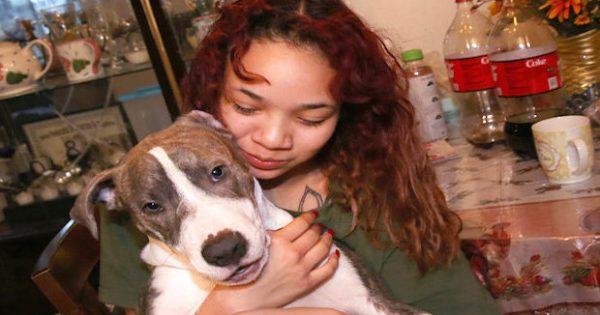 Γενναίο κουτάβι παίρνει τον έλεγχο της κατάστασης και σώζει την έφηβη ιδιοκτήτρια από επίθεση βιαστή