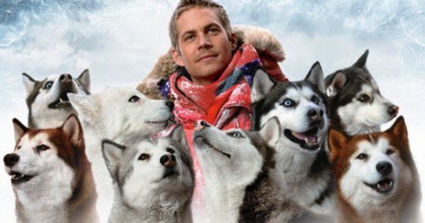 Η αληθινή ιστορία με τα σκυλιά χάσκι που εγκατέλειψαν τα μέλη επιστημονικής αποστολής στην Ανταρτική. Κατάφεραν να επιβιώσουν επί ένα χρόνο στην χιονοθύελλα και έγιναν ταινία από την Ντίσνεϋ…