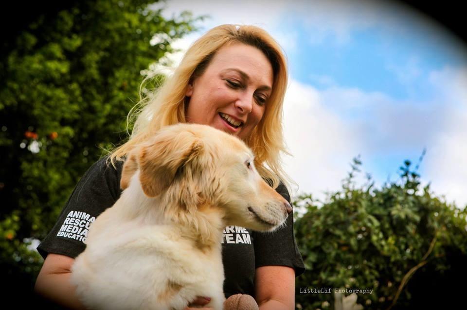 κακοποίηση σκύλων Βιομηχανία Κρέατος Σκύλου