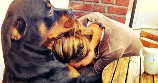 Τι συμβαίνει όταν κοιτάς τον σκύλο σου στα μάτια ή τον παίρνεις αγκαλιά;