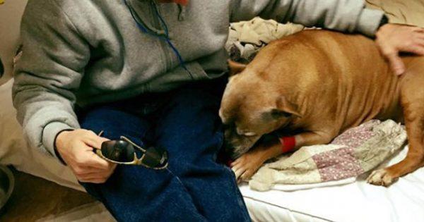 Άστεγος άντρας αδυνατεί να πληρώσει για την νοσηλεία του ηλικιωμένου του σκύλου