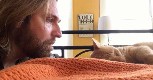 Η εκδίκηση ενός ιδιοκτήτη γάτας που έγινε viral: Δείτε ΤΙ της κάνει ως αντίποινα επειδή τον ξυπνά καθημερινά στις 4 τα χαράματα!
