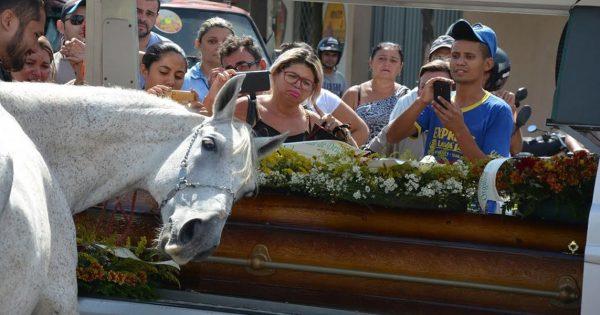 Το άλογο που συγκίνησε ολόκληρο τον πλανήτη! (εικόνες)