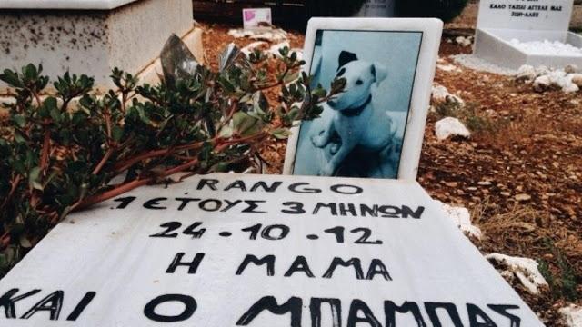 κοιμητήριο ζώων