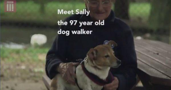 Βίντεο: 97χρονη βγάζει καθημερινά βόλτα 10 σκύλους!