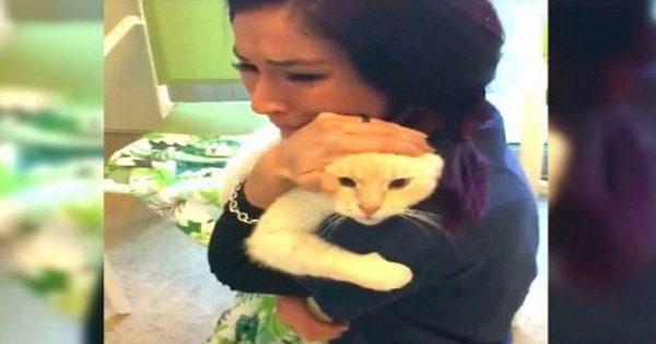 Έψαχνε τον γάτο της για δύο ολόκληρα χρόνια! Η επιμονή της την δικαίωσε! (VIDEO)
