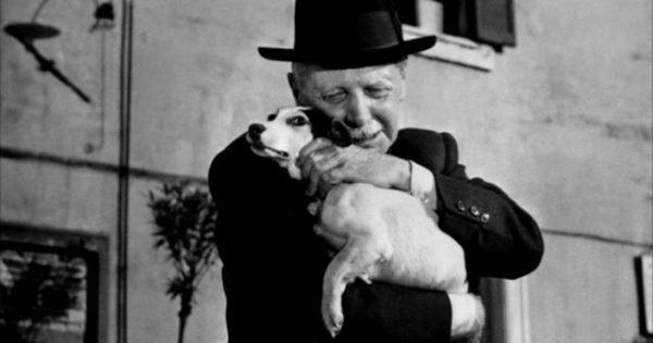 Μία συγκινητική ταινία για τη σχέση ανθρώπου σκύλου που θα σας κάνει να δακρύσετε (βίντεο)
