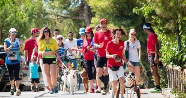 Περπατάμε στο 2ο «Walk for Paws» για να βοηθήσουμε τ' αδέσποτα της Πάρνηθας