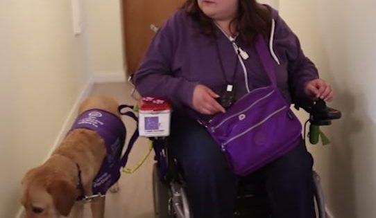 Aπίστευτο: Πως ένας σκύλος βοηθάει μια ανάπηρη γυναίκα κάνοντας της την ζωή της πιο εύκολη!