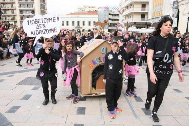 υιοθεσία αδέσποτων Πάτρα καρναβάλι