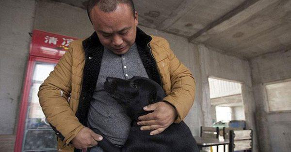 Εκατομμυριούχος χάνει τον αγαπημένο του σκύλο και σώζει περισσότερα από 2000 αδέσποτα σκυλιά στη μνήμη του