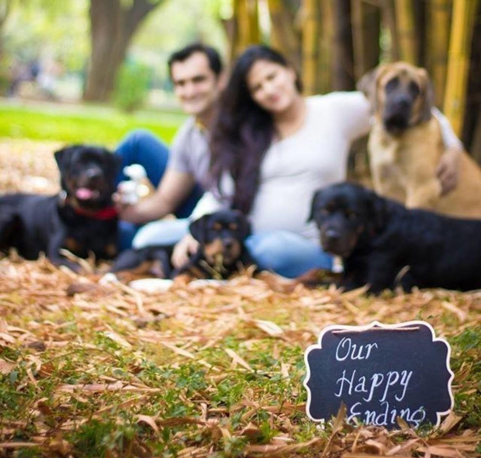 σκυλιά έγκυος