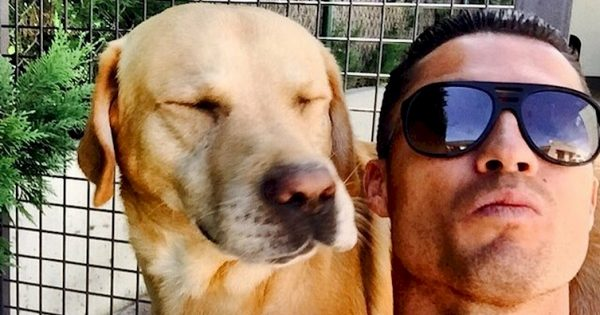Χίλια Μπράβο: Δείτε ΠΩΣ ο Κριστιάνο Ρονάλντο έσωσε 80 εγκαταλελειμμένα Σκυλιά και θα του Βγάλετε το Καπέλο!