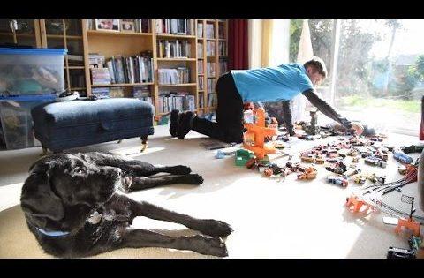 Πώς ένας σκύλος άλλαξε ριζικά τη ζωή ενός εφήβου με αυτισμό